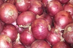 Cebollas Roja